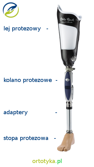 proteza_modularna_uda_tymczasowa_udowa_nogi